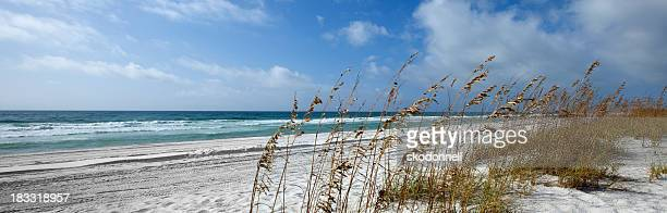 the gulf of mexico in penascola florida - pensacola beach stock pictures, royalty-free photos & images