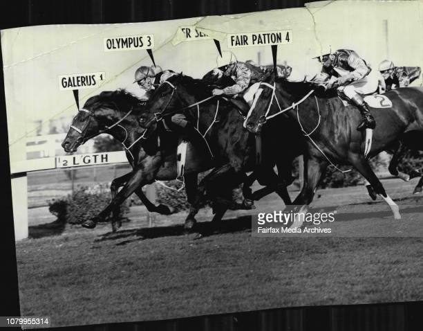 The H E Tancred CupFair Patton yesterday lost no caste for the Sydney Cup although unplaced in the H E Tancred Cup at RosehillCarrying 8lb more than...