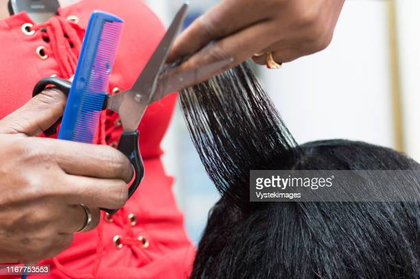 the hairdresser arranges the hair of her client by cutting them with scissors. - black hair stock pictures, royalty-free photos & images