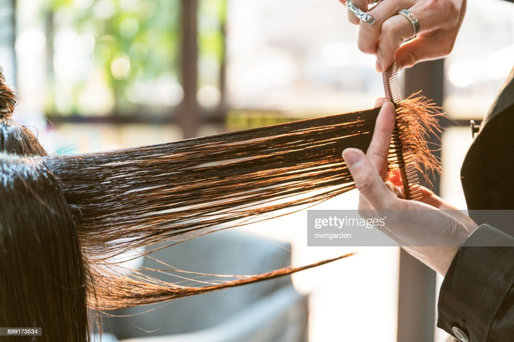 The hairdresser is cutting out hair : Stock Photo