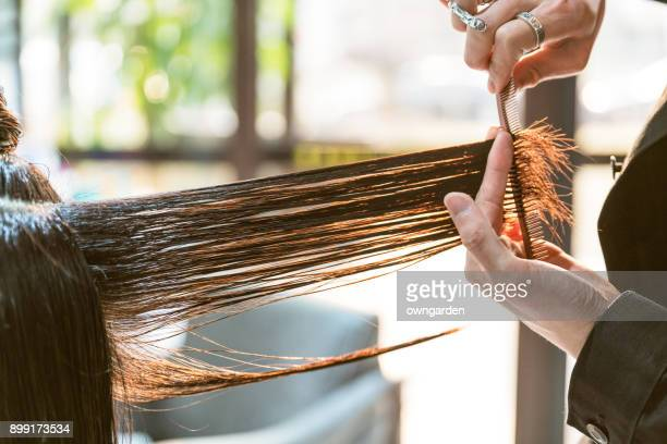 the hairdresser is cutting out hair - cutting stock pictures, royalty-free photos & images