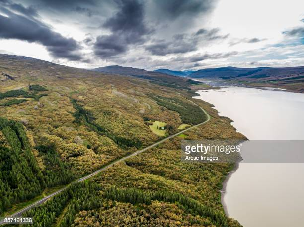 The Hallormsstadur Forest in the Autumn,  Fljotsdalur valley, Iceland
