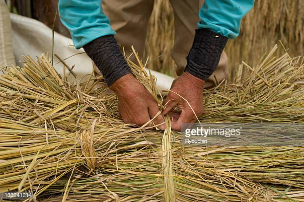 The hand of the farmer who bundles straw