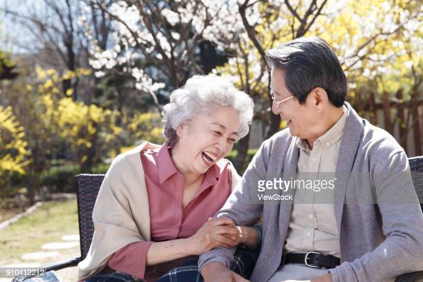 the happy old couple basked in the sun - peach blossom stock pictures, royalty-free photos & images