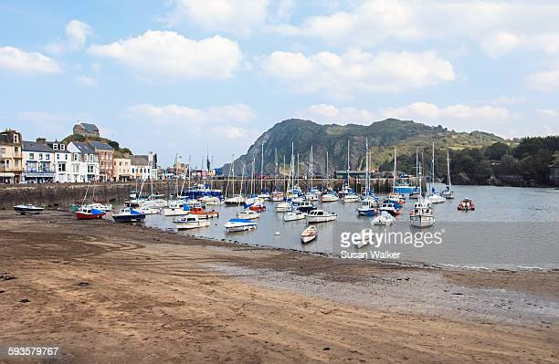 the harbour at ilfracombe - ilfracombe stock photos and pictures