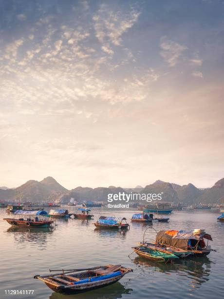 the harbour on cat ba island in halong bay, vietnam - rock formation stock photos and pictures