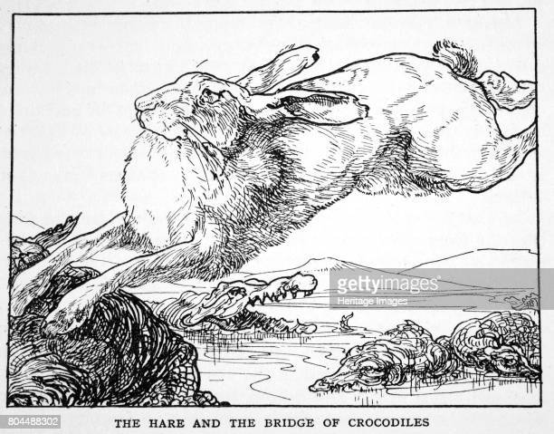 The Hare and the Bridge of Crocodiles' 1925 A Japanese legend Illustration from The Book of Myths by Amy Cruse 1925
