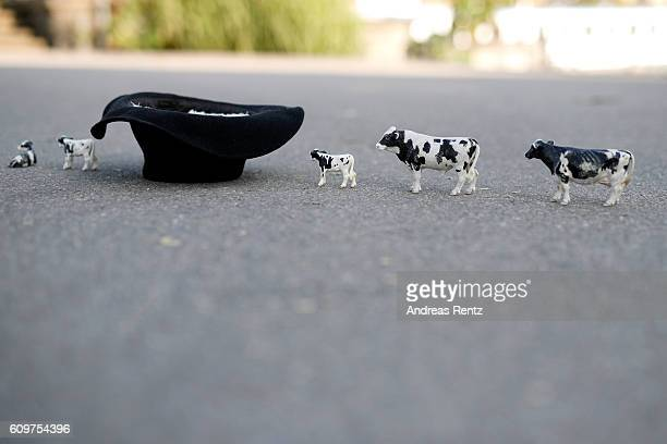 The hat for donations and plastic cows as mascots of an alphorn blower are displayed on the streets during the 12th Zurich Film Festival on September...