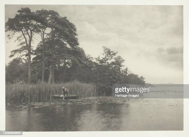 The Haunt of the Pike, 1886. A work made of platinum print, pl. Xv from the album 'life and landscape on the norfolk broads' ; edition of 200. Artist...
