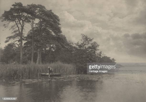 The Haunt of the Pike, 1887. Artist Dr Peter Henry Emerson. .