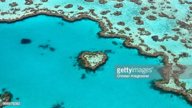 the heart of the ocean - great barrier reef aerial stock pictures, royalty-free photos & images