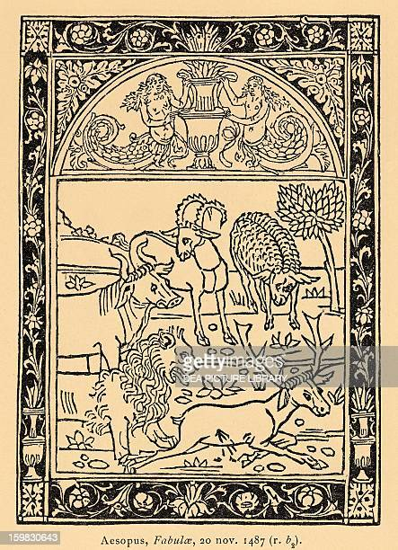 The Heifer The Goat The Sheep And The Lion from Aesop's fables plate for the 1487 Latin edition