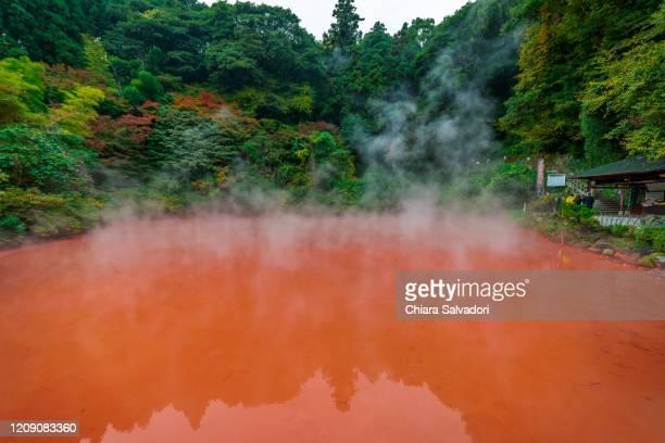 the hells of beppu: chinoike jigoku - 大分県 ストックフォトと画像