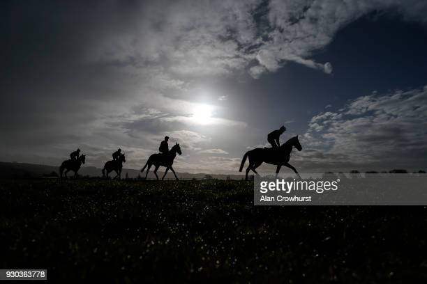 The Henry de Bromhead string on the gallops at Cheltenham racecourse on March 11 2018 in Cheltenham England