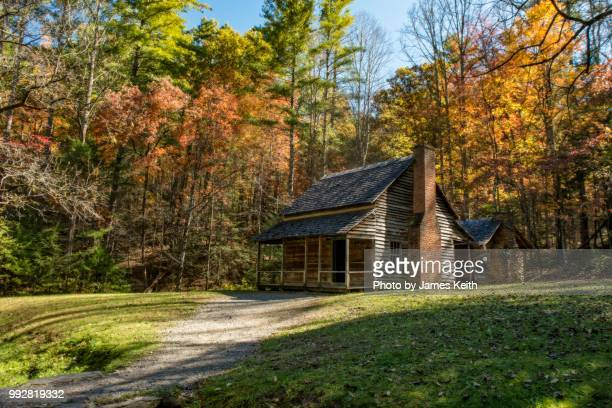 the henry whitehead homestead located in cades cove in the great smoky mountains national park is surrounded by colorful fall foliage. - cabaña fotografías e imágenes de stock