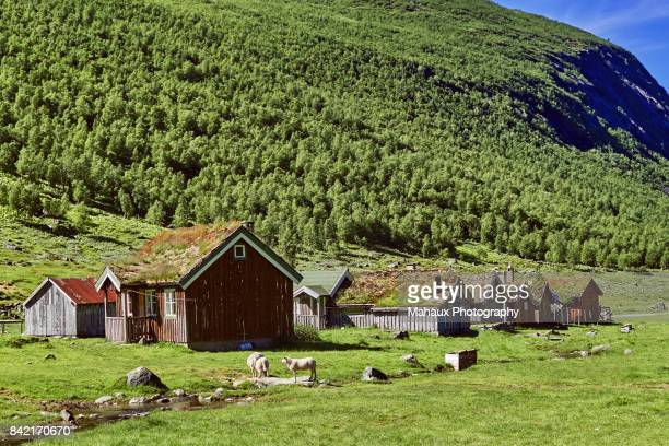 The Herdal mountain summer farm in the high plateau above Geiranger