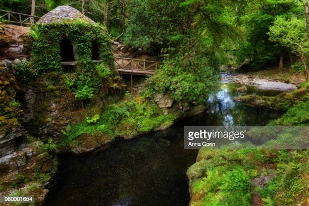 The 'Hermitage' ivy-covered stone structure along Shimna River running through Tollymore Forest Park in Northern Ireland