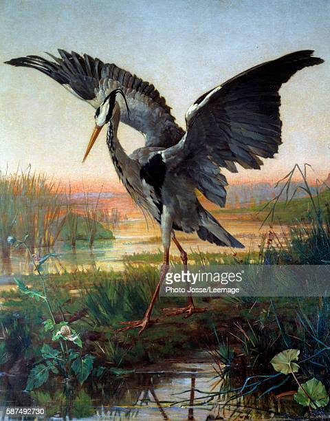 "The Heron. Illustration for the fable ""The heron and the snail"" by Jean de La Fontaine, 17th century. Watercolour by Louis Emile Villa , 19th..."