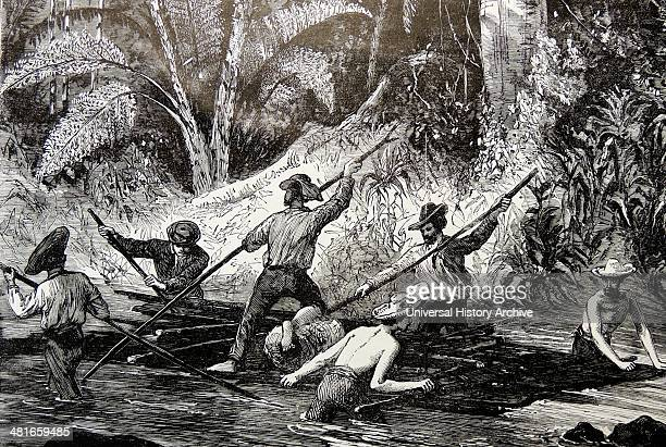 The Herrypont Expedition of 1851 working their was through virgin forest during their crossing of the Isthmus of Panama Engraving Paris c1885