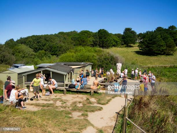 The Hidden Hut beach cafe, Porthcurnick Beach, Portscatho, The Roseland Peninsula, Cornwall, UK.
