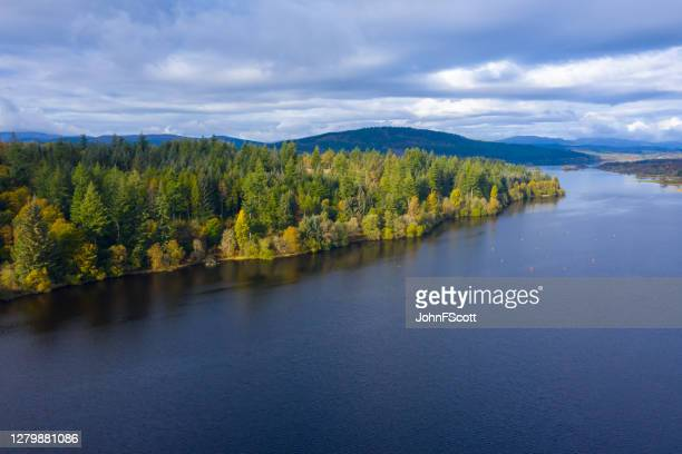 the high angle aerial view from a drone of forest growing beside a scottish loch in dumfries and galloway south west scotland. - johnfscott stock pictures, royalty-free photos & images