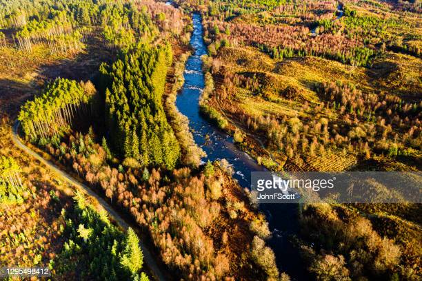 the high angle aerial view of a scottish river flowing through an area of forest in dumfries and galloway on a winter morning - forest stock pictures, royalty-free photos & images