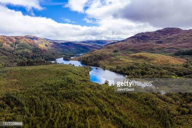 the high angle view of a scottish loch and forest in dumfries and galloway on an overcast day - johnfscott stock pictures, royalty-free photos & images