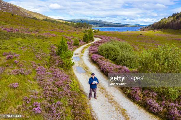 the high angle view of an active senior man looking at a map while standing on a dirt road in a remote part of dumfries and galloway, south west scotland - johnfscott stock pictures, royalty-free photos & images