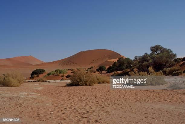 the highest dune of the world, sossusvlei - セスリエム ストックフォトと画像