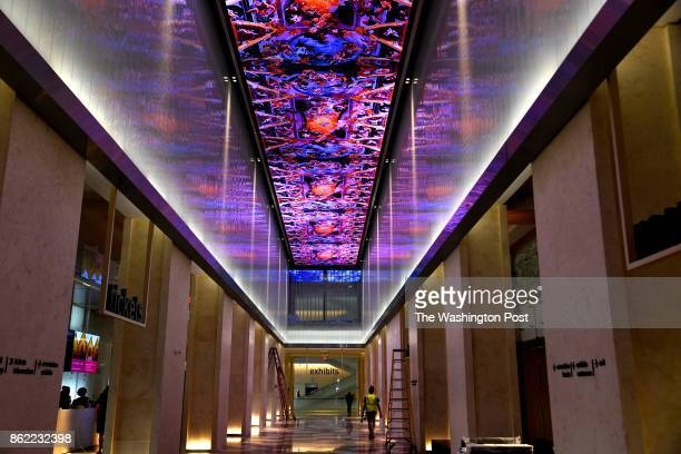 The hightech ceiling in the hallway at the entrance to the Museum of the Bible will feature digital images and movies as well as running scripture...