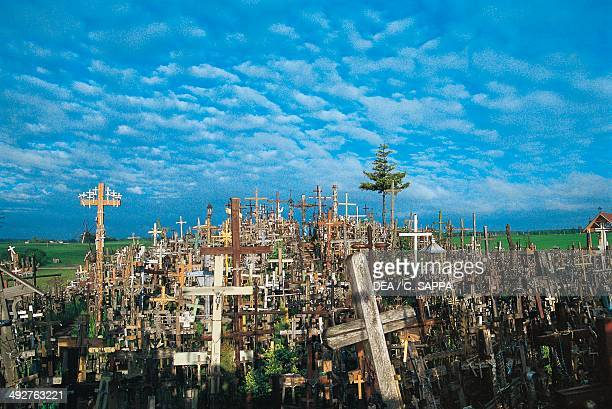 The Hill of Crosses a place of pilgrimage in near Siauliai Lithuania Detail