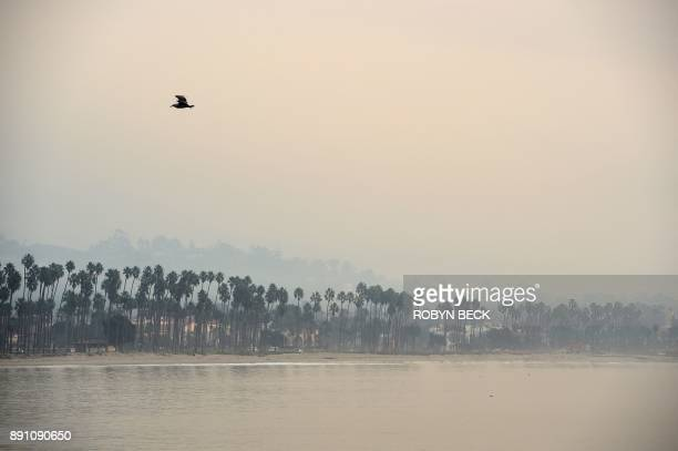 TOPSHOT The hills above Santa Barbara are shrouded in smoke from the Thomas Fire December 12 2017 in Santa Barbara California The Thomas Fire now the...