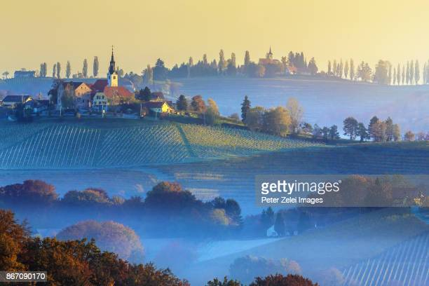 The hills and vineyards in the Ljutomer-Ormoz region in Slovenia, along the Jeruzalem wine road