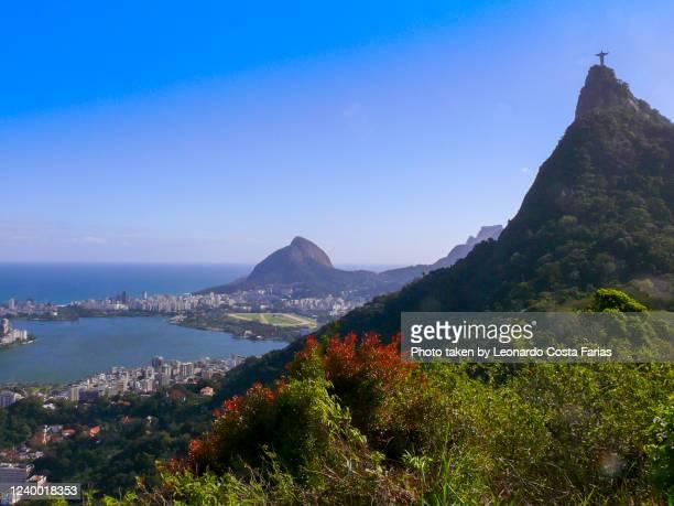 the hills at rio - leonardo costa farias - fotografias e filmes do acervo