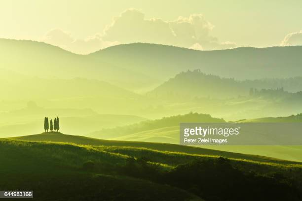 the hills of tuscany at sunrise - tal stock-fotos und bilder