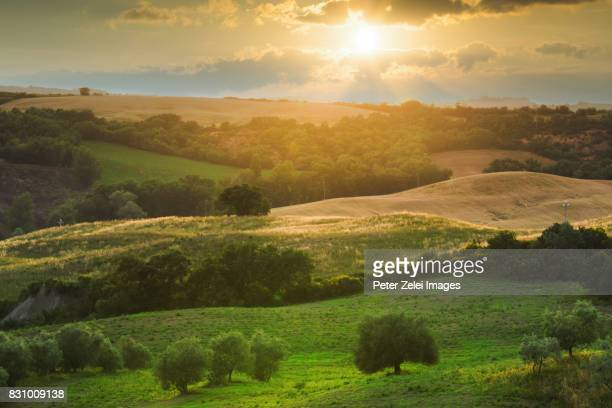 The hills of Tuscany at sunset