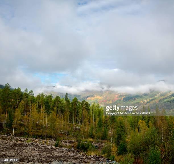 the hills of uvdal, norway - september stockfoto's en -beelden