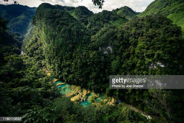 the hilly terrain of semuc champey - guatemala stock-fotos und bilder