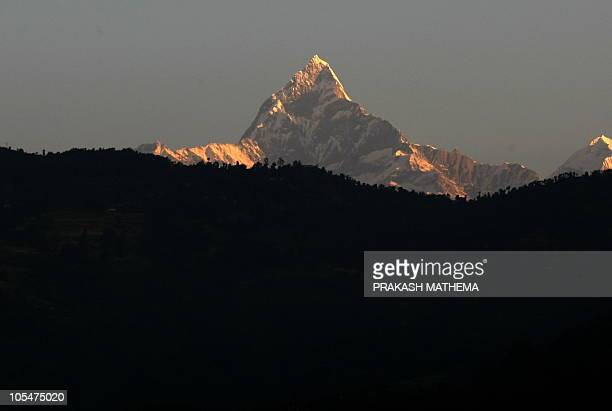The Himalayan mountain range of Annapurna and the 6993metre Mount Machhapuchre rises behind the tree line in the popular tourist destination of...