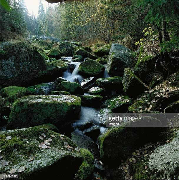 The Hllfall of the river Kamp downriver of Arbesbach in the Austrian Waldviertel a small waterfall surrounds by rocks and woods Photograph Around...