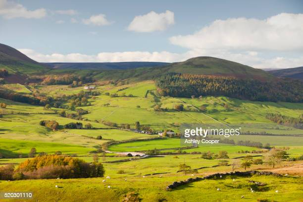 the hodder valley below dunsop bridge in the trough of bowland, lancashire, uk. - lancashire stock pictures, royalty-free photos & images