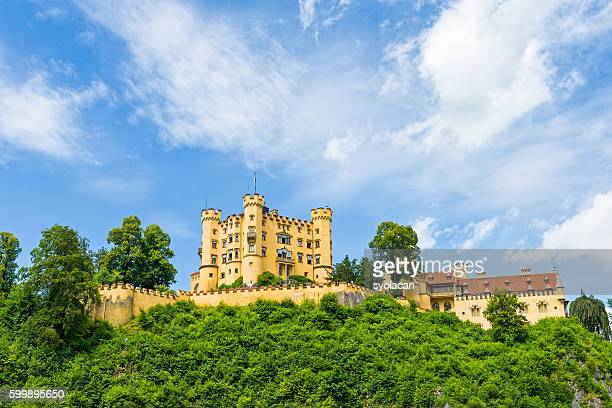 the hohenschwangau castle - syolacan ストックフォトと画像