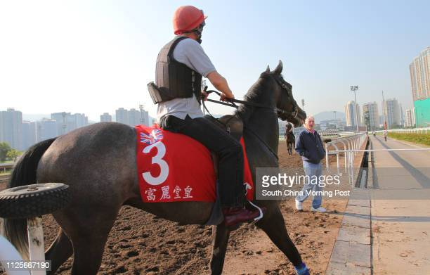 The Hong Kong Cup runner Grandeur going back to stable after gallop on the all weather track Trainer Jeremy Noseda waiting for the horse at Sha Tin...