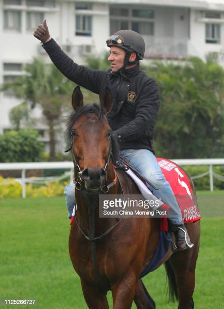 The Hong Kong Cup runner Ransom Note ridden by Michael Hills walking back after gallop on the Turf at Sha Tin on 09Dec11