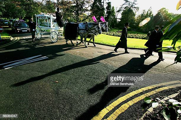 The horse drawn carriage makes its way through the crematorium grounds for the funeral of murdered model Sally Anne Bowman on November 4 2005 in...