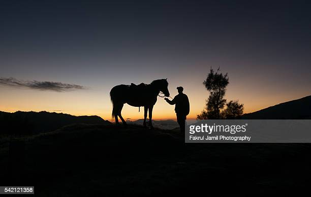 The Horseman with Sunset Background