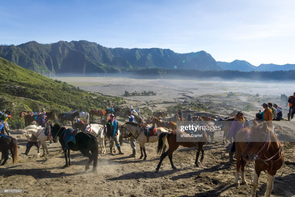 The horsemen service at the foothill of Mount Bromo, Bromo Tengger Semeru National Park, East Java of Indonesia. : Stock Photo