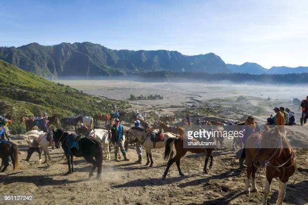 the horsemen service at the foothill of mount bromo, bromo tengger semeru national park, east java of indonesia. - shaifulzamri stock pictures, royalty-free photos & images