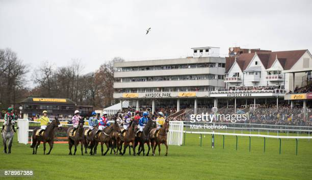 The Horses and riders wait for the start of the Betfair Stayers' Handicap Hurdle on November 25 2017 in Haydock England