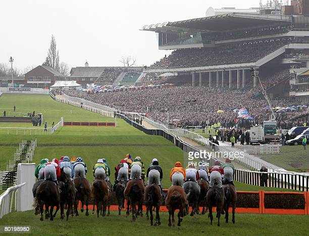 The horses at the start of the first race the Anglo Irish Bank Supreme Novices Hurdle Race on day one of the Cheltenham festival at Cheltenham...